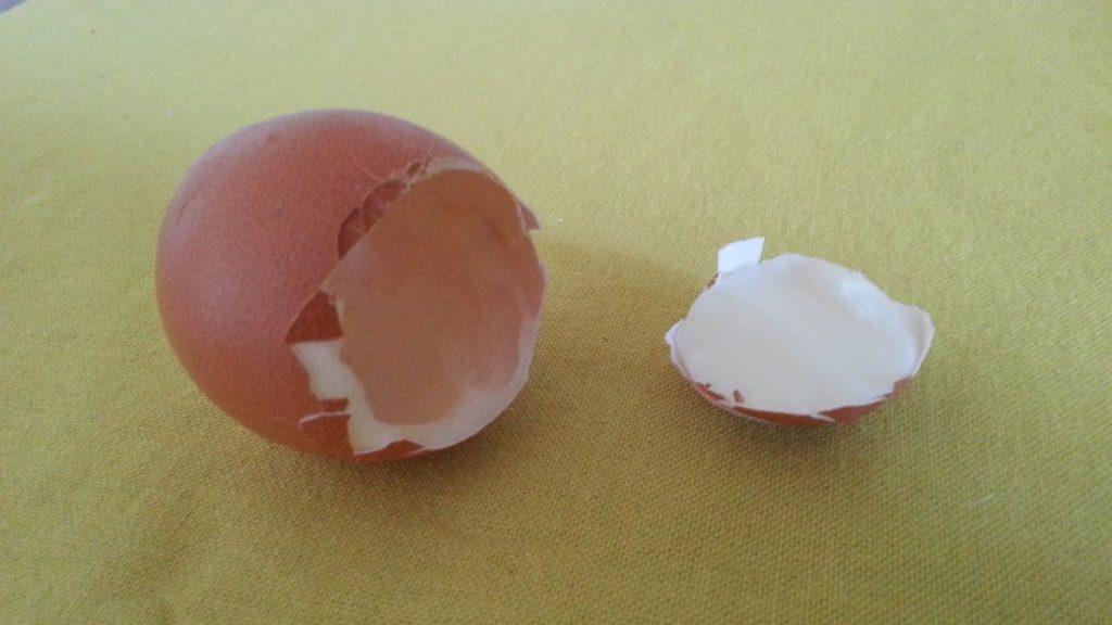 Die Schale des geköpften Frühstücks-Ei